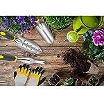 EDO Gardening Tools Set, 6 Piece Stainless Steel Garden Hand Tools, Ergonomic Handle Garden Kit Includes Hand Tools…