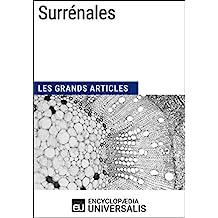 Surrénales: Les Grands Articles d'Universalis (French Edition)