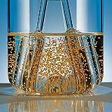 Argos Technologies 182023 Spinner Flask, 100 mL