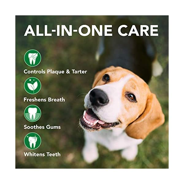 Vet's Best Enzymatic Dog Toothpaste | Teeth Cleaning and Fresh Breath Dental Care Gel | Vet Formulated 3