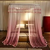 QIXIAOTING Summer High-Grade Mosquito Net Gradient, Drawstring Guide Mosquito Net Gradient Powder - Drawstring Guide 2.0 M [6.6 Ft] Bed