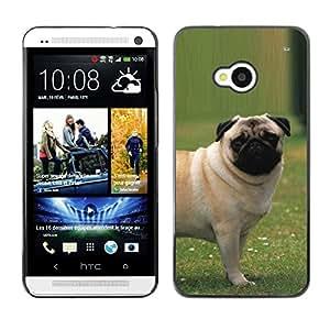 Vortex Accessory Carcasa Protectora Para HTC ONE ( M7 ) - Pug Outside Grass Puppy Dog Small -