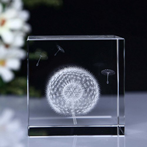 HSMM 3D Dandelion Paperweight (Laser Etched) in Crystal Glass Cube Gift For Christmas/Birthday/Valentine's day ()