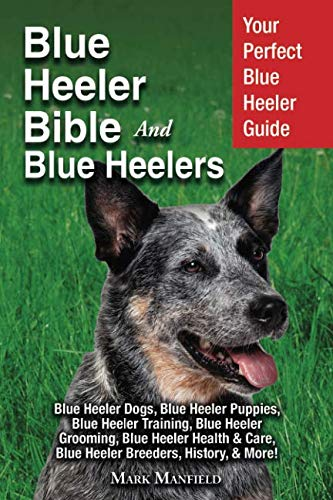 Blue Heeler Bible And Blue Heelers: Your Perfect Blue Heeler Guide Blue Heeler Dogs, Blue Heeler Puppies, Blue Heeler Training, Blue Heeler Grooming, ... Care, Blue Heeler Breeders, History, & More! by DYM Worldwide Publishers