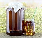 Loose Leaf Iced Tea Infuser: Stainless Steel Deep Filter & Glass Gallon Jar w/ Lid & Starter Tea Leaves (Filter & Jar + Loose Leaf Tea)