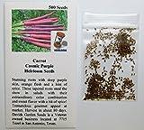 David's Garden Seeds Carrot Cosmic Purple SL7723