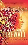 The Last Firewall (Singularity Series Book 3)