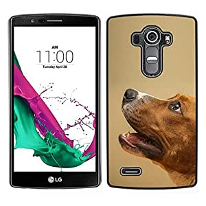 All Phone Most Case / Lindo Foto Caso Duro Carcasa Estuche de protectora / Hard Case for LG G4 // Smooth Fox Terrier perro de mascota canina Mutt