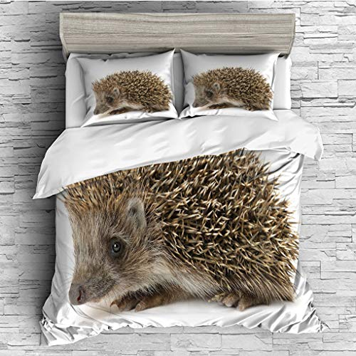 Arrows Spiked (3 Pieces (1 Duvet Cover 2 Pillow Shams)/All Seasons/Home Comforter Bedding Sets Duvet Cover Sets for Adult Kids/King/Hedgehog,Small Cute Mammal with Spiked Hair on Its Back and Sides Wildlife Photogra)