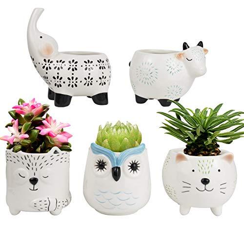 LA JOLIE MUSE Succulent Planter Pots - Cute Ceramic Animal Set, Cat Cow Elephant Fox Owl, Christmas Home Decor Gift (Ceramic Animals Large)