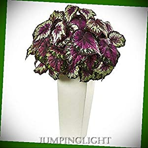 JumpingLight Begonia with White Planter Artificial Flowers Wedding Party Centerpieces Arrangements Bouquets Supplies 66