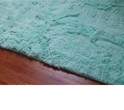 College Plush Rug - Calm Mint - 4' x 6' (Mint Rug)