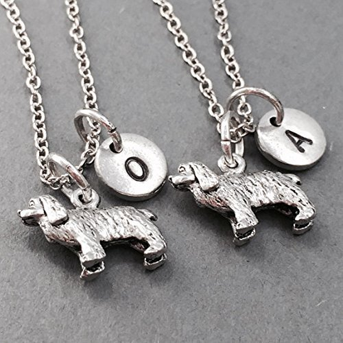 Best friend necklace, dog necklace, animal necklace, friendship necklace, bff necklace, personalized necklace, friends necklace