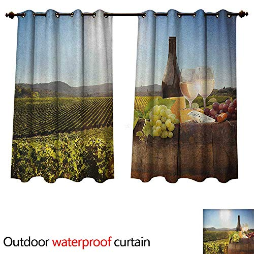 Anshesix Wine Home Patio Outdoor Curtain White Wine with Barrel on Famous Vineyard in Chianti Tuscany Agriculture W120 x L72(305cm x 183cm) -