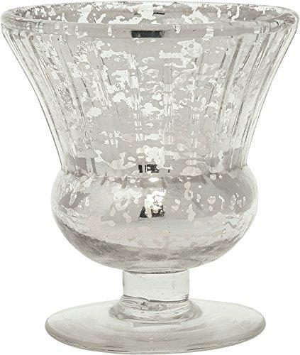 Amazon Cultural Intrigue Luna Bazaar Vintage Mercury Glass Vase
