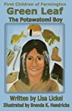 The Potawatomi Boy, Lisa J. Lickel, 0985621524