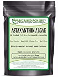 Astaxanthin – Natural Cracked Cell Wall Algae 1% Powder (Haematococcus plurialis), 4 oz