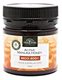 Hab Shifa Nature's Divine Secret Active Manuka Honey MGO400+ - Premium Australian Honey (250g)
