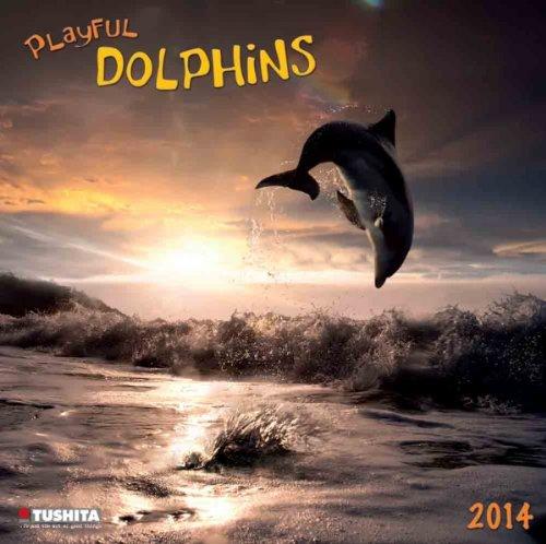 Playful Dolphins, Broschürenkalender 2014 (What a Wonderful World)