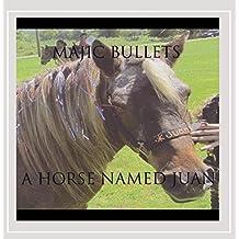 Horse Named Juan