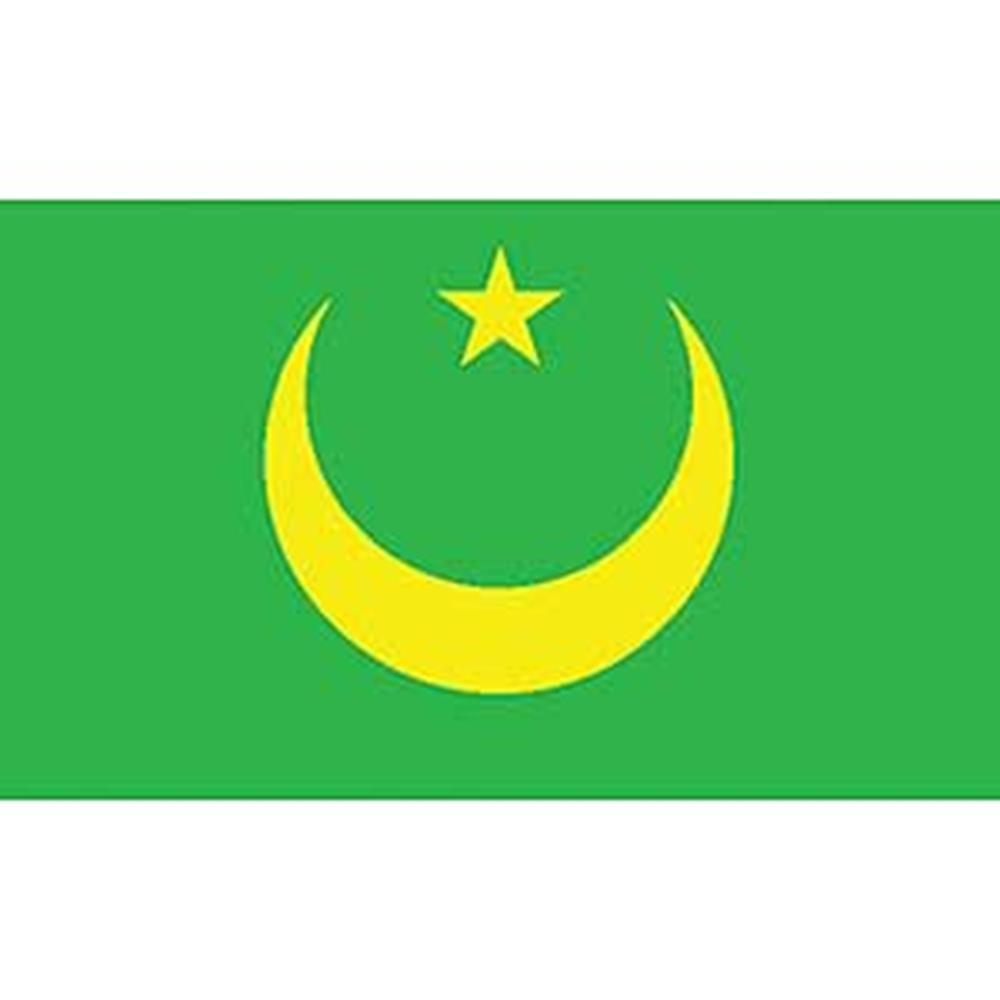 12in x 18in EagleEmblems F8213 Flag-Mauritania