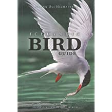 Icelandic Bird Guide: Appearance, Way of Life, Habitat