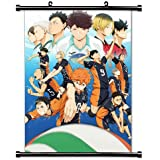 Haikyu!! Anime Fabric Wall Scroll Poster (16x23) Inches. [WP] Haikyu!!-1