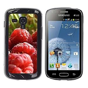 Exotic-Star ( Fruit Macro Raspberry Close ) Fundas Cover Cubre Hard Case Cover para Samsung Galaxy S Duos / S7562