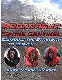 Aconcagua Stone Sentinel Climbing the Stairway to Heaven