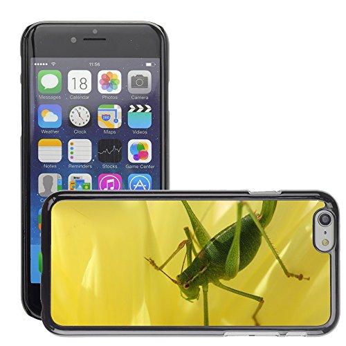 """Just Phone Cases Hard plastica indietro Case Custodie Cover pelle protettiva Per // M00127906 Viridissima Grasshopper Nature Macro // Apple iPhone 6 PLUS 5.5"""""""
