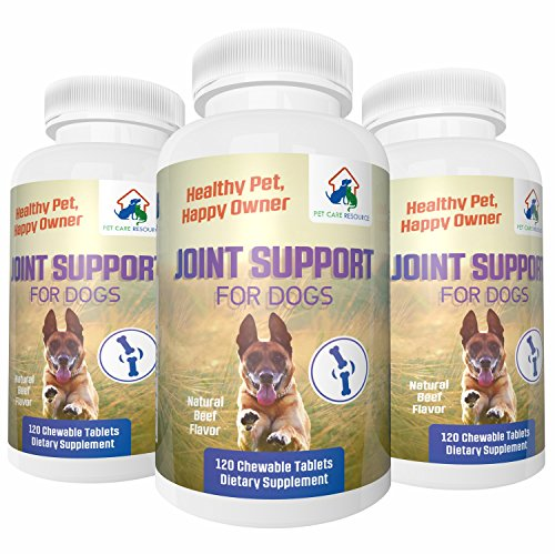 Best Hip and Joint Support for Dogs Dietary Supplement with Glucosamine, Chondroitin, MSM Vitamin C - 120 Beef flavored Chewable Tablets Improves Comfort, Reduces Joint Pain Made In USA