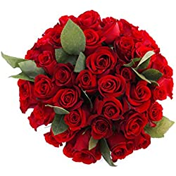 50 Farm Fresh Red Roses Bouquet By JustFreshRoses | Long Stem Fresh Red Rose for Valentine's Day Delivery