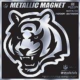"Cincinnati Bengals 6"" MAGNET Silver Metallic Style Vinyl Auto Home Football"