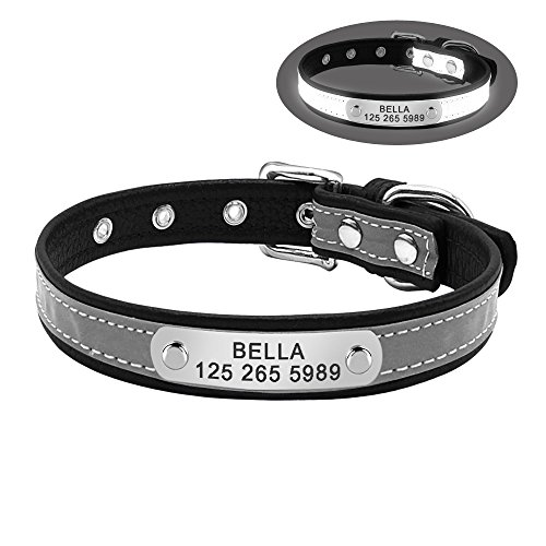 Didog Personalized Engraved Collar,Custom Dog Collar with Reflective Strap for Puppy Small Medium Dog,Black,M (Cat Reflective Id Tag)
