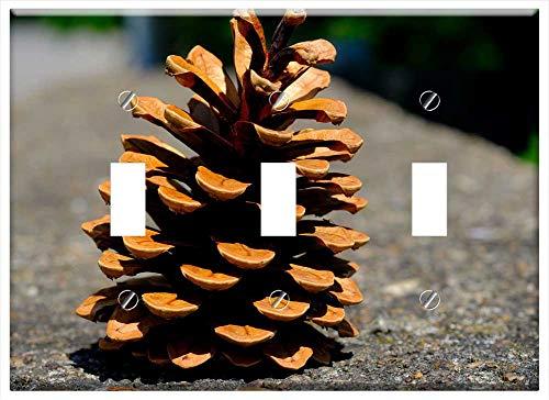 Switch Plate Triple Toggle - Pine Cones Pine Tree Tap Close Conifer Macro 1 ()