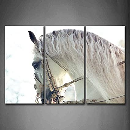 3 Panel Wall Art Beautiful White Horse Painting The Picture Print On Canvas  Animal Pictures For