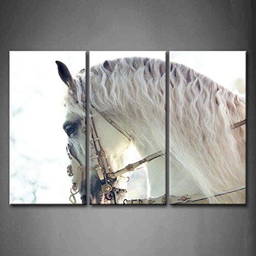 3 Panel Wall Art Beautiful White Horse Painting The Picture Print On Canvas Animal Pictures For Home Decor Decoration Gift piece (Stretched By Wooden Frame,Ready To Hang)