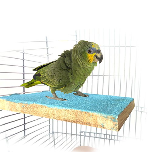 Bwogue Colorful Bird Perch Stand Platform,Natural Wood Paw Grinding Bird Cage Perch for Parrot Parakeet Hamster Gerbil Cages (Natural Wood Birdcage Perch)