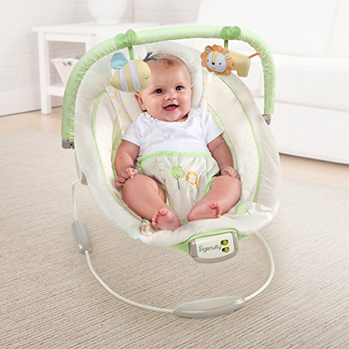 Ingenuity Cradling Bouncer Sunny Snuggles