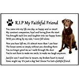 Chocolate Labrador Dog Bereavement Gift Magnet - RIP My Faithful Friend - dog loss, sympathy, memorial Flexible Magnet 6 x 4 by Fridge Magnets