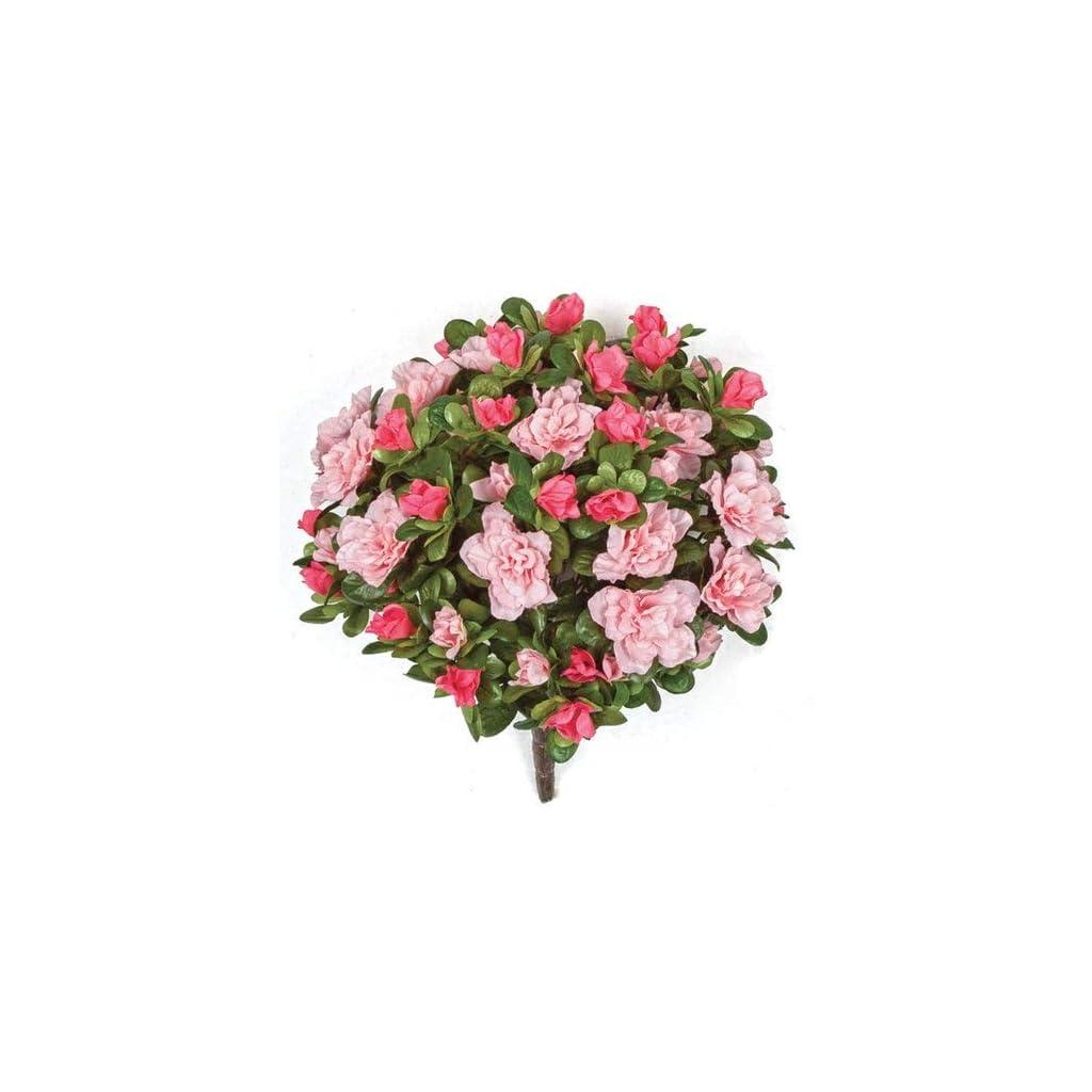 12-Inch-Azalea-Bush-Signature-Foliage-Fuchsia-Beauty-Cerise
