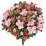 12-Inch-Azalea-Bush-Signature-Foliage-Fuchsia-Beauty-Cerise
