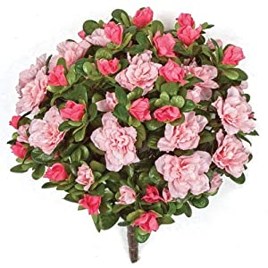 12 Inch Azalea Bush Signature Foliage Pink, Rose, Light Pink 35