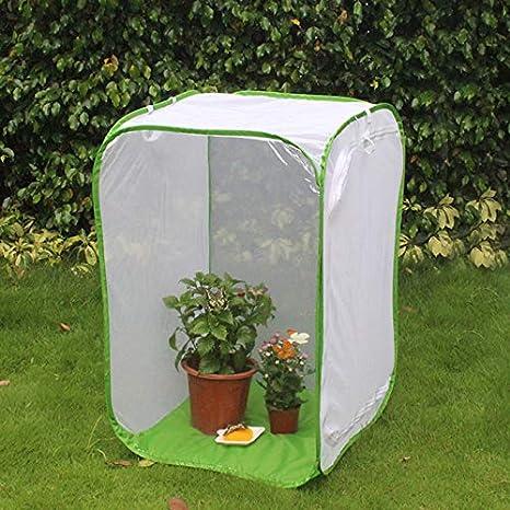 edhua Pliable Cages d'élevage Insectes Papillon Habitat Cage pour Petit Animal Pop Up Cage