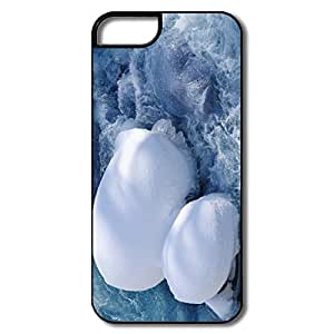 Water Flow Pc Popular Case Cover For IPhone 5/5s