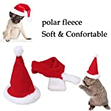 "edealing Cute Santa Hat & Scarf Xmas Costume Suit Dress Up for Pet Dog Cats Fashion Christmas Accessory, Red (S-Fit Neck Size Within 11"")"