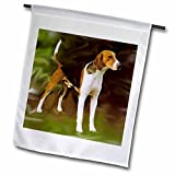 Dogs American Foxhound - American Foxhound - Flags - 18 x 27 inch Garden Flag