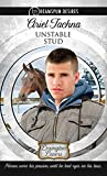 Unstable Stud (Dreamspun Desires Book 8)