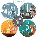 Baby Monthly Milestone Stickers - Set of 16 Uniquely...