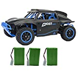 100 mph battery for rc cars - Blomiky D181 High Speed Racing RC Trucks Remote Control Cars 1/18 Scale 4WD Toy Vehicle 15.5MPH+ Off Road Monster Electric Race Buggy Extra 2 Battery D181 Blue